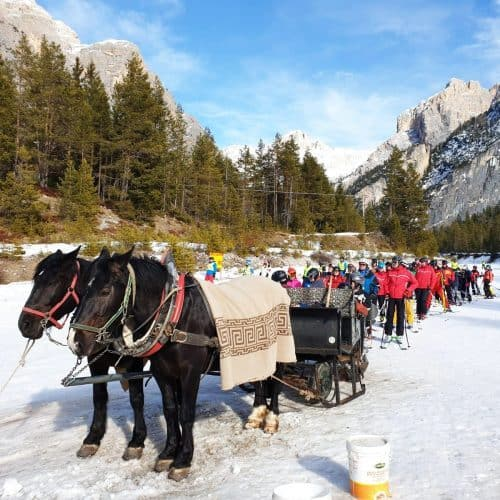 sled with horses in armentarola