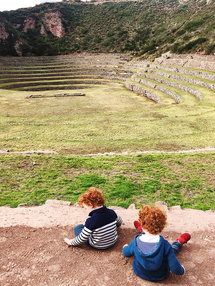 Maybe they are not interested in the ruins, but , but the loved to run around in Moray!